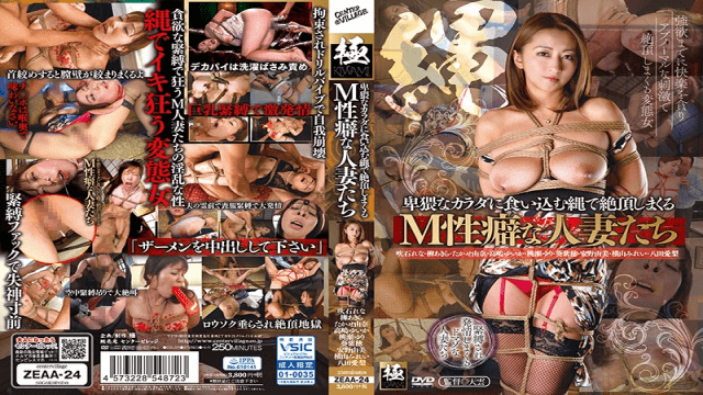 CenterVillage ZEAA-24 Cum Snapping With A Rope That Digs Into An Obscene Body M Habitable Men With Habit