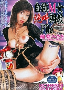 Misaki Inaba hot Asian milf in her sexy stockings loves group sex