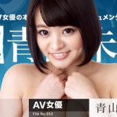 Caribbeancom 113016_004 Miku Aoyama Female hot continent File.053