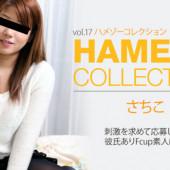 [Heyzo 0326] Sachiko HAMEZO -POV collection- vol.17