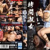 Ddt-510 Hoshikawa Maki Online Free