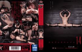 Das DASD-362 Shiho Egami Iron Crimson Vol. 14