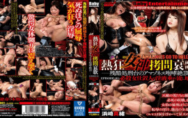 BabyEntertainment DAMZ-001 Mao Hamasaki Bokep Download The Enthusiastic Goddess Torture Lament The Crown Of The Amazones Roar Of The Cruel Execution Stand