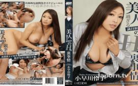 CATCHEYE DRC-112 Reiko Kobayakawa Jav big tits CATCHEYE Vol.112 Beautiful Parliamentary Candidate's Uncover Nasty Situation