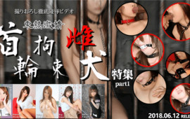 Tokyo-Hot n1312 Tokyo Heat Dongre Passion First Round Female Dog Feature Part1